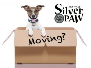 Moving: Renewing & Updating Engraving Info On Silver Paw Pet Tags