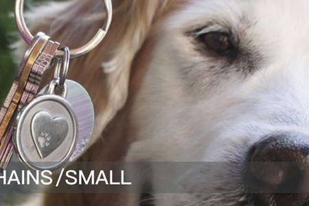 Small Engraved Pet Keychains